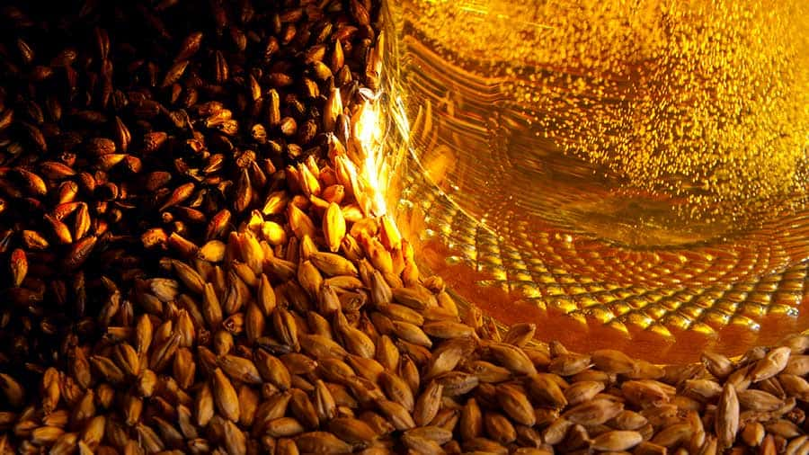 Cascading corporate strategy into operations strategy in a Malt industry